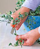 Make ivy-endings yourself
