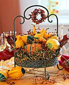 Metal basket with cucurbita (pumpkin), roses (rosehip)