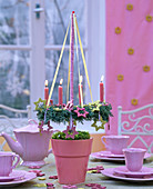 Hanging wreath in pink pot