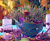Calluna vulgaris (budding heather), heather wreath