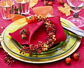 Rose, Ilex, mini garland on red napkin