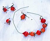 Threaded rosehips