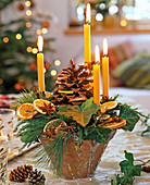 Unusual Advent wreath with honey-colored tree candles