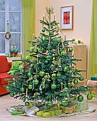 Abies nordmanniana (Nordmanntanne) als Weihnachtsbaum mit goldenen Kerzen
