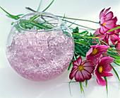 Plant gel instead of water