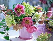 Bouquet of non blooming and blooming Helleborus Gold Collection
