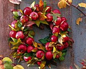 Apples and sweet leaves wreath