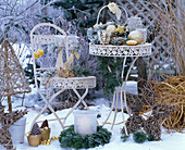 White garnish in the snow with Christmas arrangement with Pinus