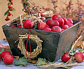 Malus in wooden bowl, triticum wreath and bouquets