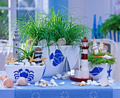 Decorate planters with maritime templates