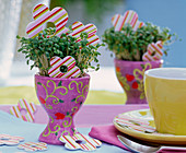 Cress sowing in lilac eggcup
