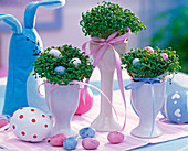 Cress sowing in tall white eggcups