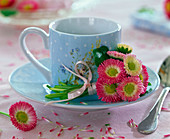 Bellis bouquet on light blue espresso cup, petals