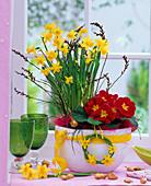 Bowl with Narcissus 'Tete Á Tete' (Daffodil), Primula (Primrose)