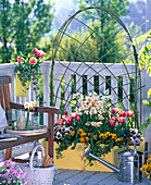 Spring box with plaited trellis help