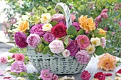 Basket of historical and modern roses