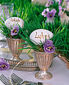 Festive table decoration with grass runner and pansy flowers