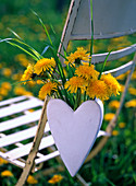Taraxacum and grass in white heart vase hanged on chair back