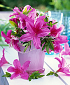 Bouquet made of rhododendron (Japanese azalea) in pink glass vase