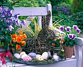 Easter basket with colorful eggs, Viola wittrockiana, hare