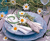 Argyranthemum leucanthemum flowers, wreath
