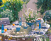 Table decoration with Leucanthemum (spring marguerite)
