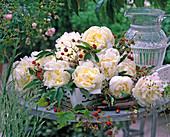White-yellow Paeonia, Fragaria on white tray