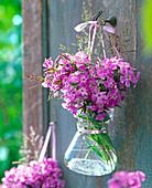 Phlox, grasses in glass vase
