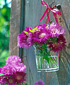 Small Centaurea Dealbata (Knapweed) bouquet in glass