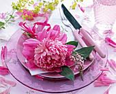 Paeonia (peony) blossom on white napkin, pink