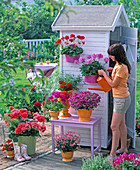 Pour plants on the device house