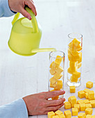 Yellow Oasis cubes as plug-in aid