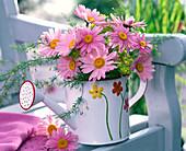 Argyranthemum (daisies), Rosa, Asparagus