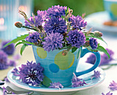 Centaurea flowers in blue espresso cup with dots