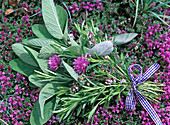 Herbal bouquet with salvia (sage), rosmarinus (rosemary), thymus