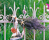 Lavandula bouquet on white fence, sailboat, shells