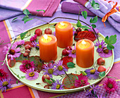 Candle decoration in autumn with aster