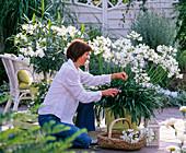 weiße Terrasse: Frau schneidet Blüten von Agapanthus