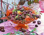 Bowl with Aesculus (chestnut), Rosehips, Physalis,