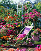 Deck chair on the summer flowerbed with Dahlia, Cosmos, Tagetes