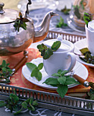 Herbal tea from peppermint