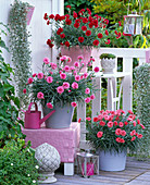 Balcony corner with solitary carnations