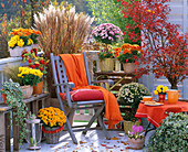 Autumn balcony with chrysanthemums, miscanthus and cherry