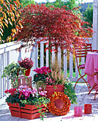 Red autumn balcony