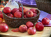 Malus 'Topaz' (apple) in wicker basket