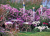 Autumn seat, perennials in pink