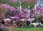 Autumn seat, perennials in pink