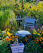Small garden corner with apple tree and summer flowers