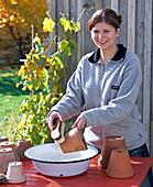 Woman cleaning clay pots with root brush and water