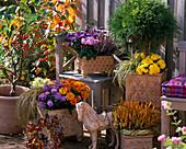 Autumn terrace with hand-made ceramics